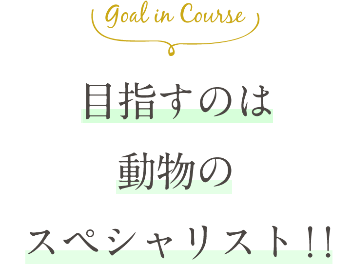 Goal in Course 犬の「スゴイ」を伸ばす。しつけのプロへの第一歩。